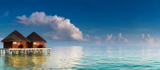 Panorama with water villas