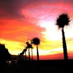 Le Costa Rica : un séjour de rêve