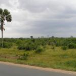 Togo: guide de voyage et vacances