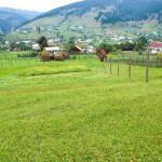 Roumanie: guide de voyage et vacances