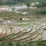 Indonésie: guide de voyage et vacances