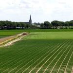 Séjour et vacances Pays-Bas