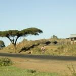 Billet avion et vacances Kenya