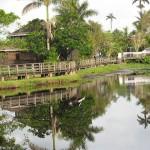 Jamaïque: guide de voyage et vacances pas cher